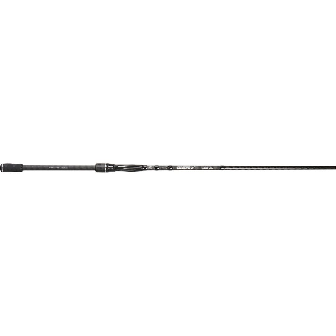 BFT Lizzard X 7,6` 10-30g
