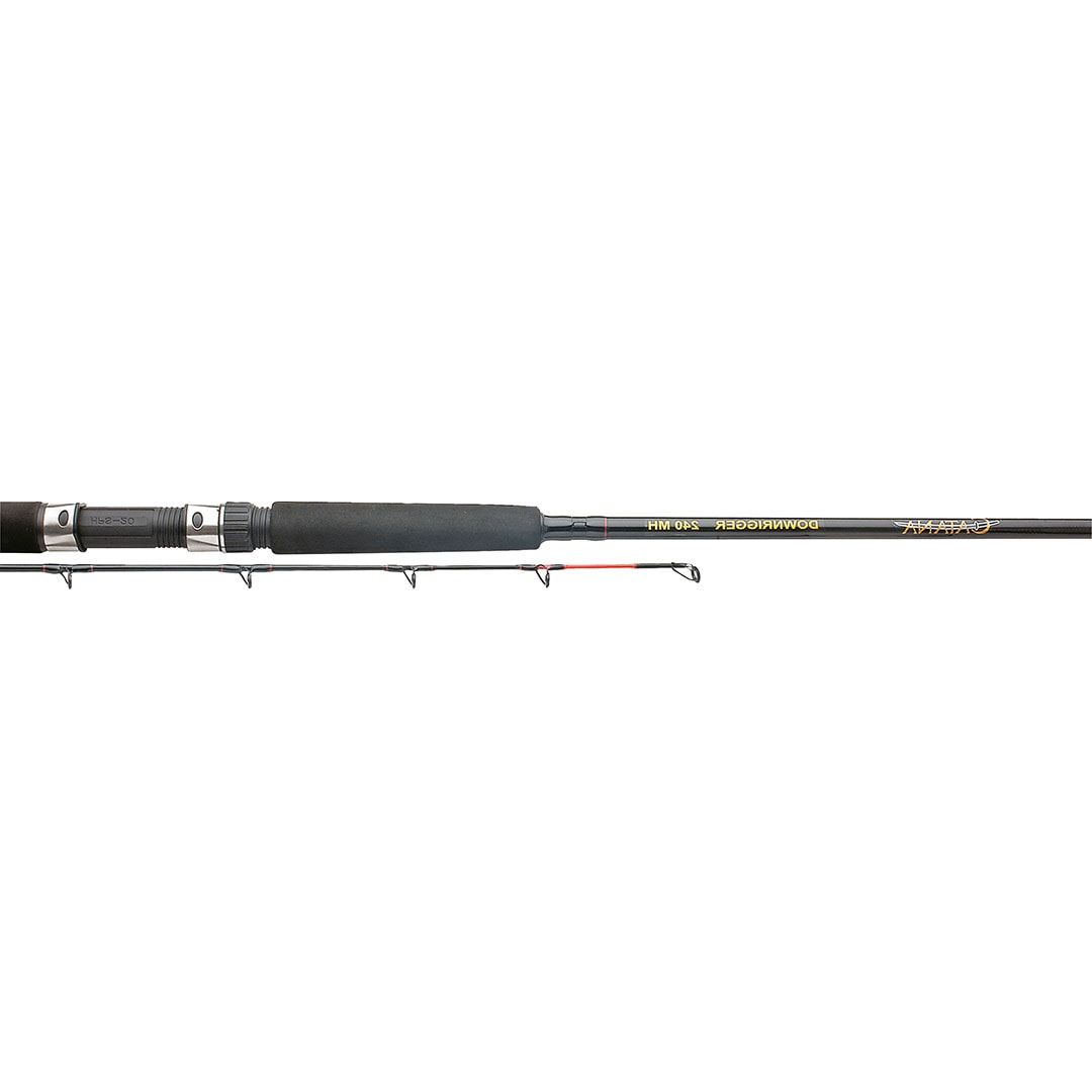 Shimano Catana Downrigger AX 255H _2st