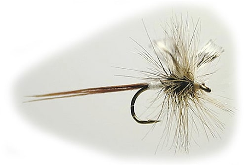 Mayflies 10 grey drake winged spent #10