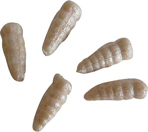 GULP! Alive! Maggots White